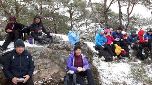 Kandaskogen i snøvær
