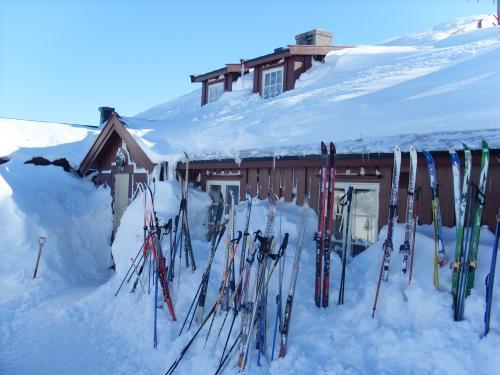 Krækkja på Hardangervidda. Foto: DNT Oslo og Omegn