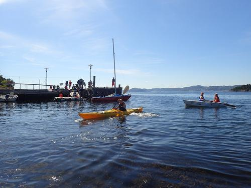 Sjøliv og stor aktivitet på brygga under campene!
