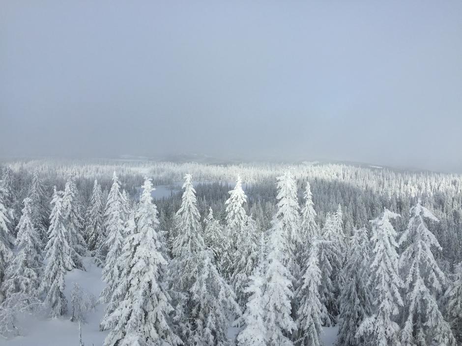 Nydelig utsikt fra tårnet på Marifjell (717 moh). Høyeste punktet i Nannestad Kommune.