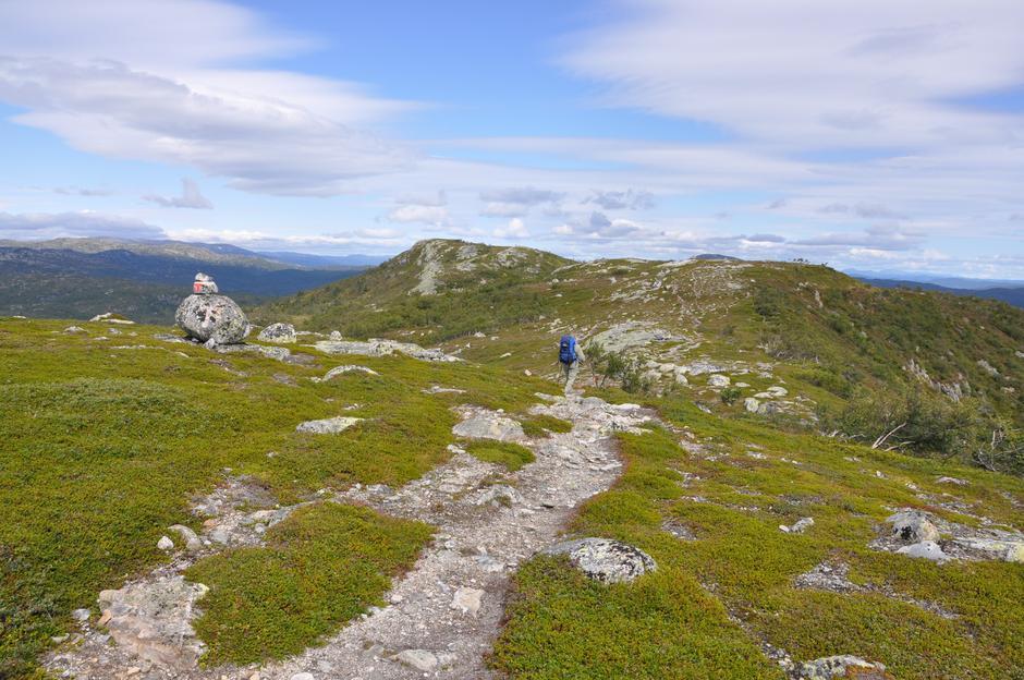 Himmelkvævristene - mellom Torsdalsbu og Hovstøyl
