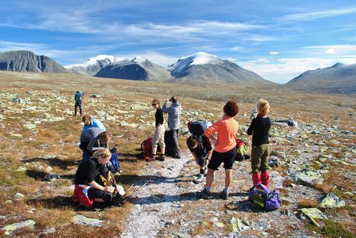 Helgetur Rondane.  Foto: Kristin Baune  Bochud