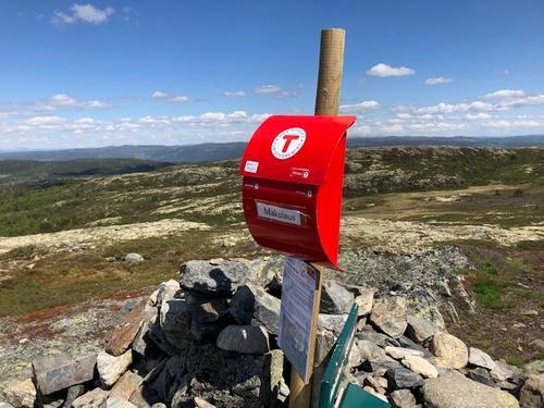 15. juni hadde Barnas Turlag kremtopptur til Makalausfjellet
