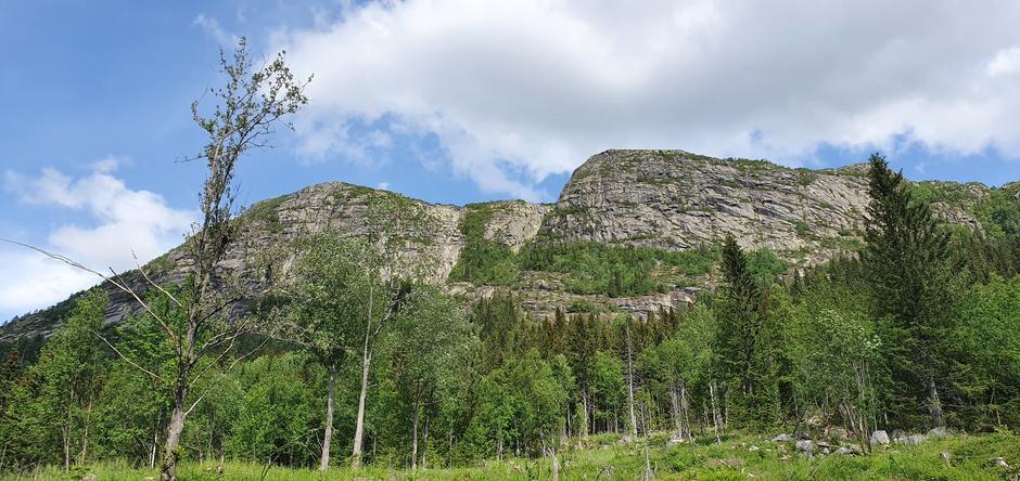 Utsikt mot Bukollen med Bjønneklemma.