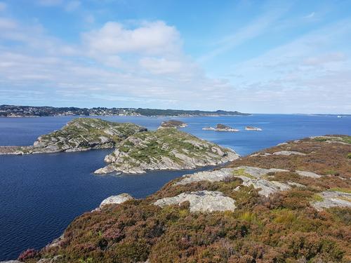 Utsikt nordover Hjeltefjorden