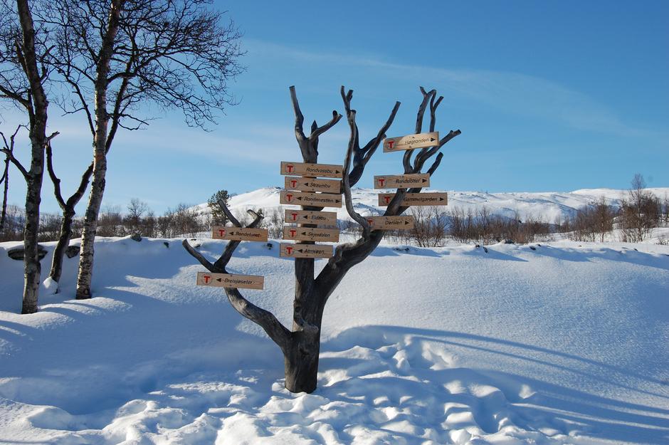 Følg DNTs kvistete løyper i vinterfjellet.