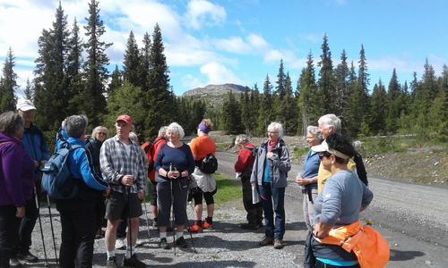 20. juni hadde Seniorgruppa tur rundt Mellsenn