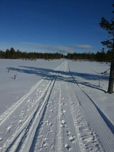 Ta skiene fatt på Finnskogen