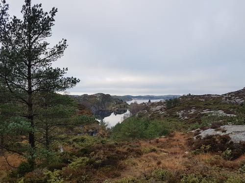 Åsavatnet og sjøen sett frå stien til Nese.