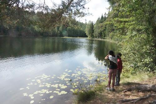 Fiske ved Drengsrudvannet