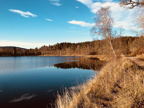 Bogstadvannet og Oslomarka kan også pryde seg i høstfarger!