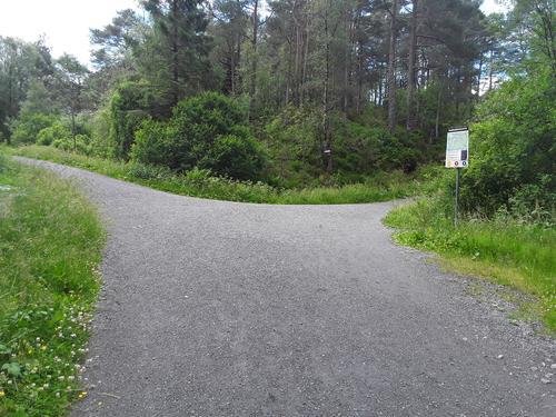 Et av kryssene i Hordnesskogen  flere turveger å velge mellom med ulik lengde.