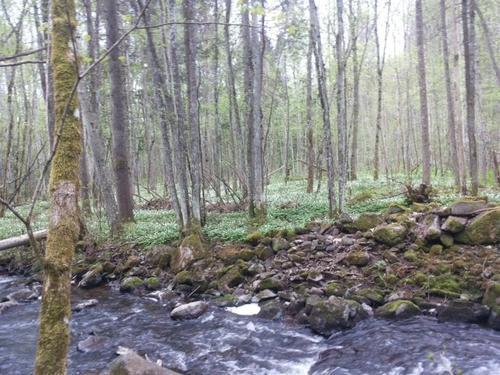 Åstad Naturreservat