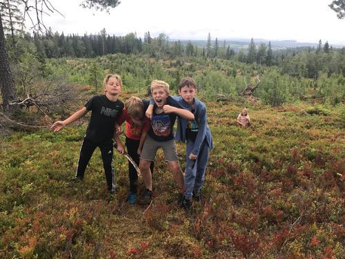 Gjett om denne gjengen koser seg i skogen!