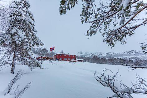 Olalia Fjellstove har åpent i vinterferien