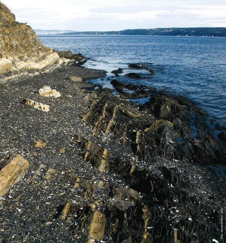 Geologi langs kyststien