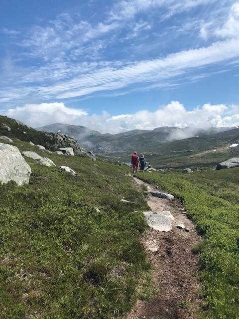 TØRT: Her fra stien mellom Skåpet og Flørli.