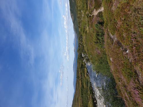 Langs elva utover dalen på Søreidesida