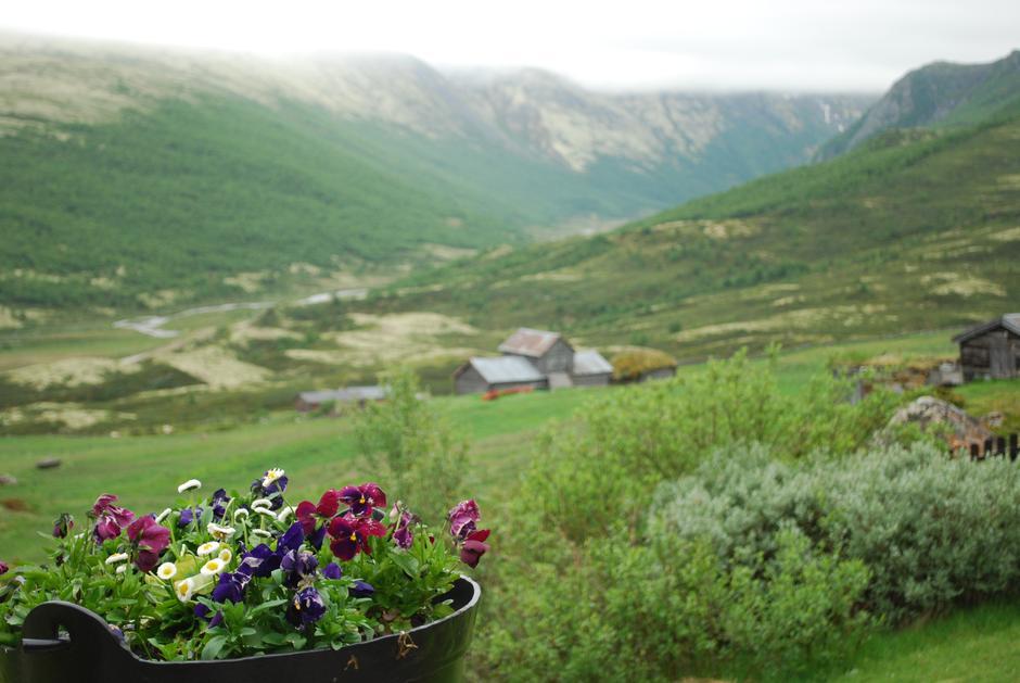 Nyt utsikten, slapp av, nyt livet...