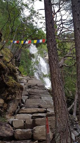 Trivselsskogen - norges beste turrute?