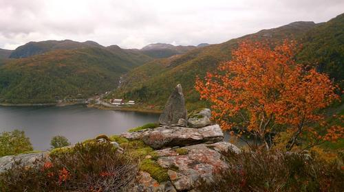 Bukkedalen ligg bak fjellstova.