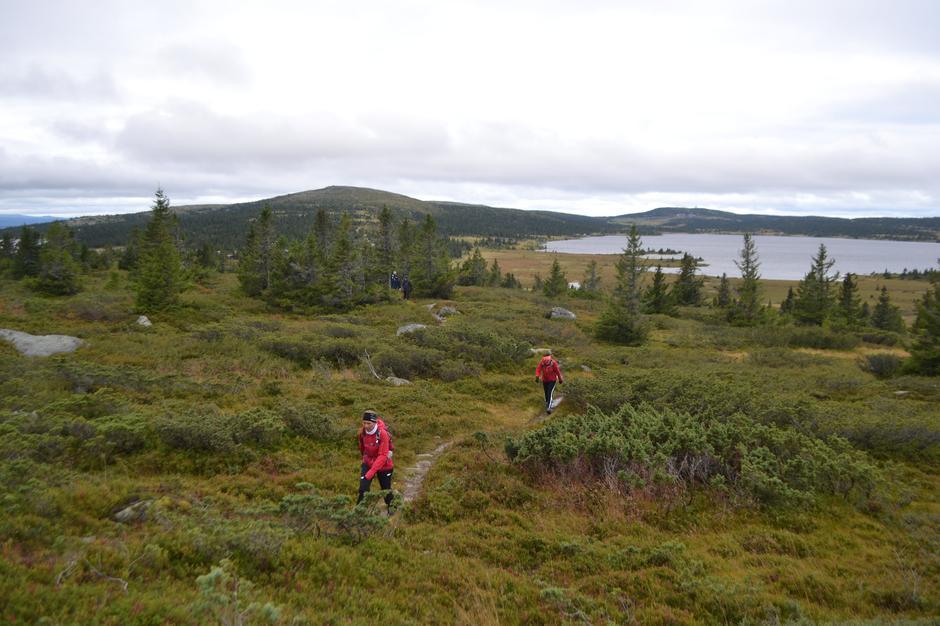 7-fjellstur Lillehammerfjellet 2019