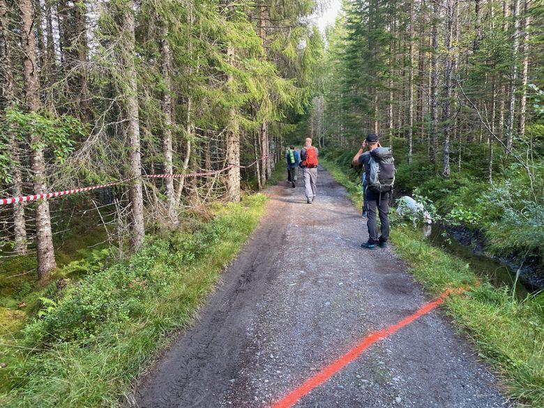 Oppmerking med merkespray og merkebånd for hvor veien vil komme og krysse turveien til Kringstadsetra.