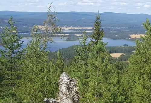 Utsikt fra Granlivarden