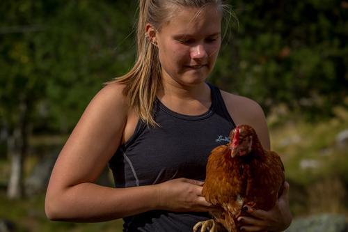 Sunniva med høne på Renndølsetra