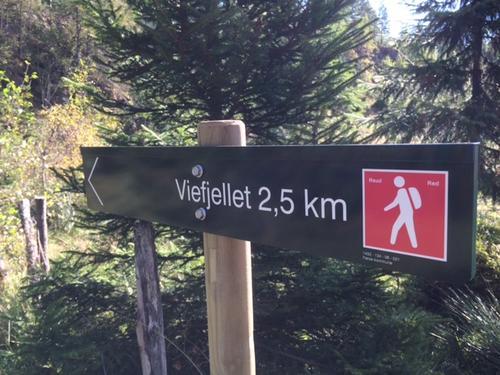Har du turbilete frå skog og fjell i Førde?