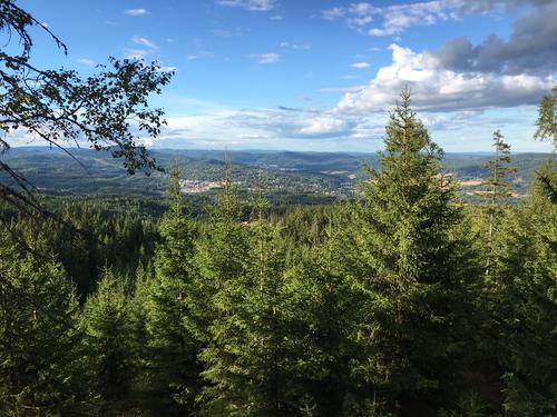 Fra Lillomarkas høyeste topp, Brennberget, har vi fantastisk utsikt i alle himmelretninger.