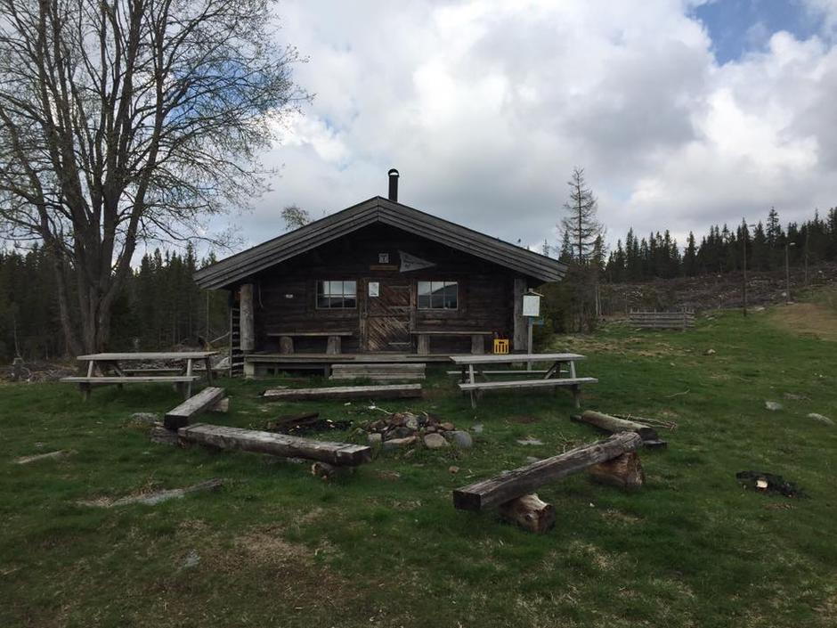 Uteområdet ved koia i mai