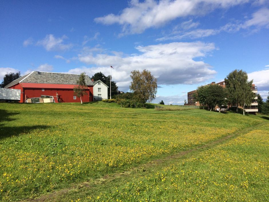 Søbstad gård på Saupstad