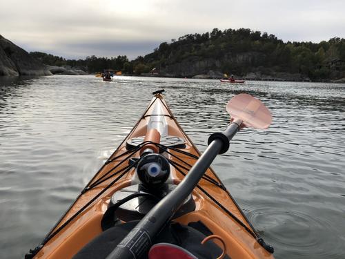 Nydelig fellestur på sjøen