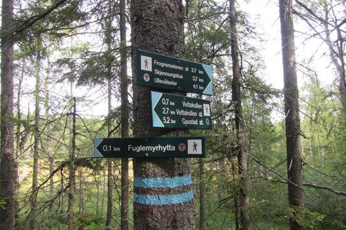 Stien over Vettakollen er godt merket.