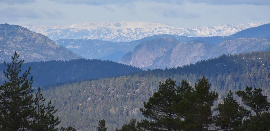 Utsikt fra toppen av Risfjell til den bratte Rønnomnibben med snøkledde Lifjell lengst bak.