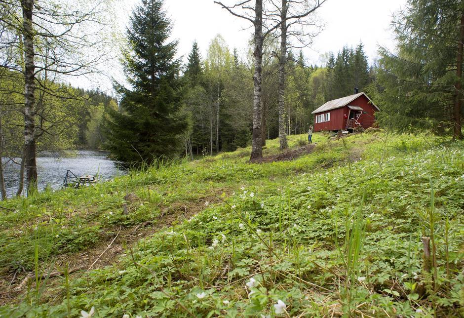 HER BITER FISKEN: Røyrivannskoia i Østmarka har fin beliggenhet rett ved Røyrivannet. Husk fiskestang.