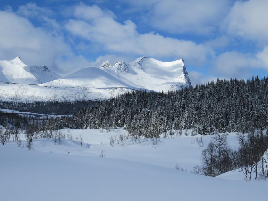 Vinter ved Sætervatnet i Sjunkhatten Nasjonalpark