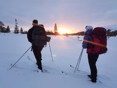 Føremelding nordre fjellområder i Trøndelag
