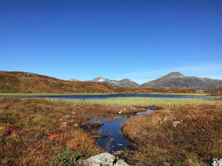 Nøkketjønna på Årheimsfjellet i Stryn. Med bl. a Kyrkjenibba 1400 moh i bakgrunnen.