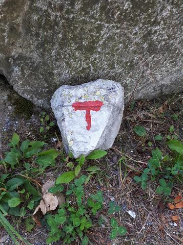 T- på stein