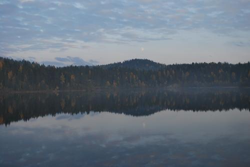 Speilbilde i Østmarka