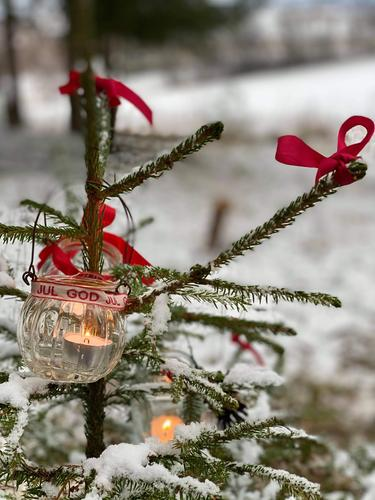 Enkel og stemningsfull juletrepynt lager du selv