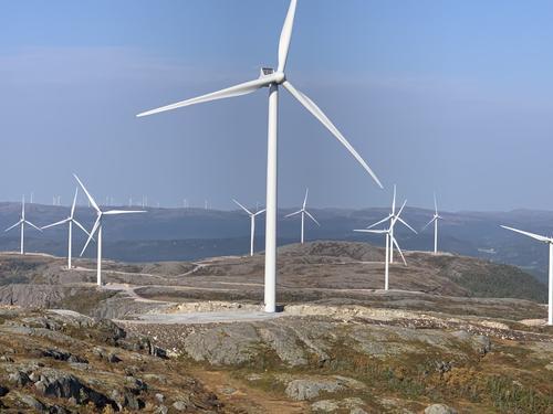 Naturen i Trøndelag har lidd nok, men nå er det håp!