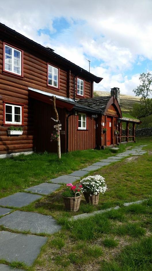 Bjørnhollia juni 2017