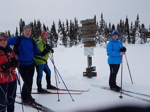 Skitur på Vingromsåsen. Lørdag 3. mars