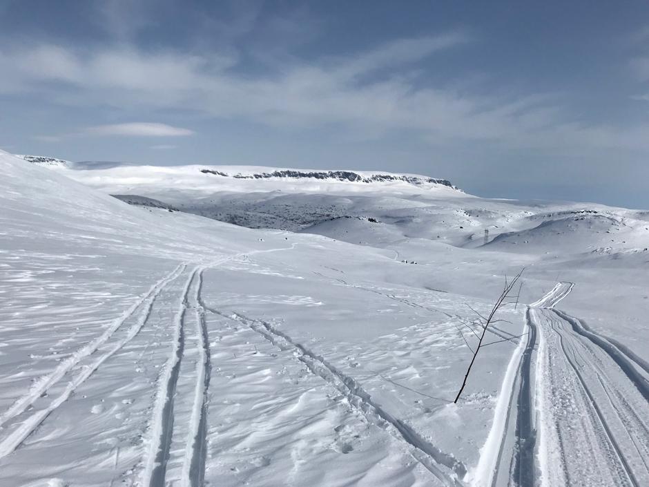 Fredag 13.4: Krækkja-Haugastøl. Hallingskvarvet i bakgrunnen.