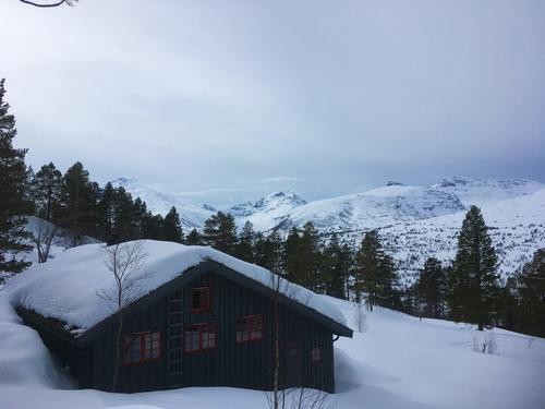 Vinterland ved Vindølbu
