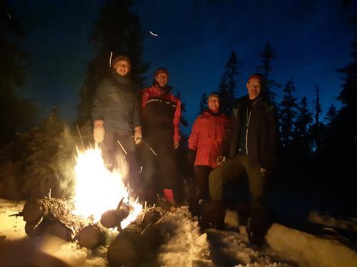 Vinternatt i Gropmarka
