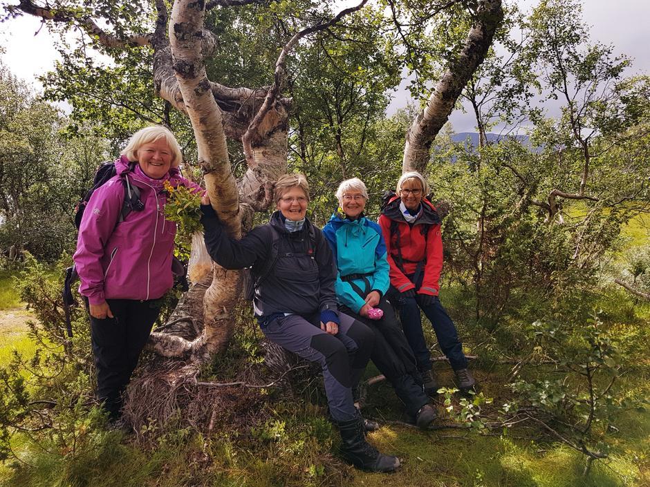Anne-Lise Tufte, Evelyn Christiansen, Inger Benjaminsen og Lise Hunstad Lie.